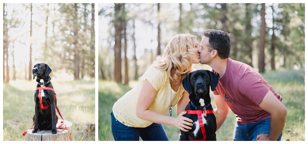 20150530_Amber_Chris_Big_Bear_Engagement_Photographer_05556