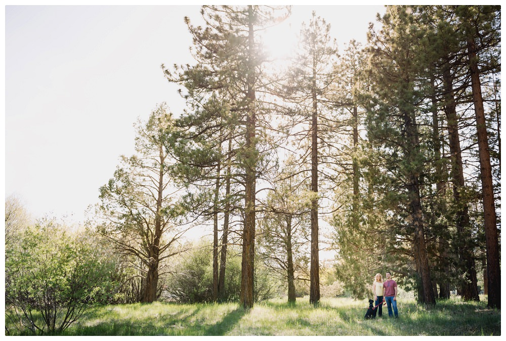 20150530_Amber_Chris_Big_Bear_Engagement_Photographer_05560